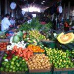 Ayurveda focused meals